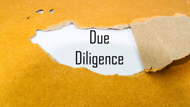 The Going Public Lawyer's Due Diligence Review